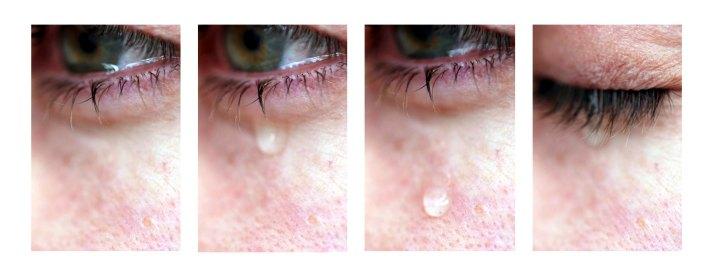Ojos abatidos I, II, II y IV